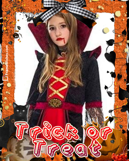 Cat and Pumpkins Trick Or Treat Happy Halloween Photo Frame Free Online