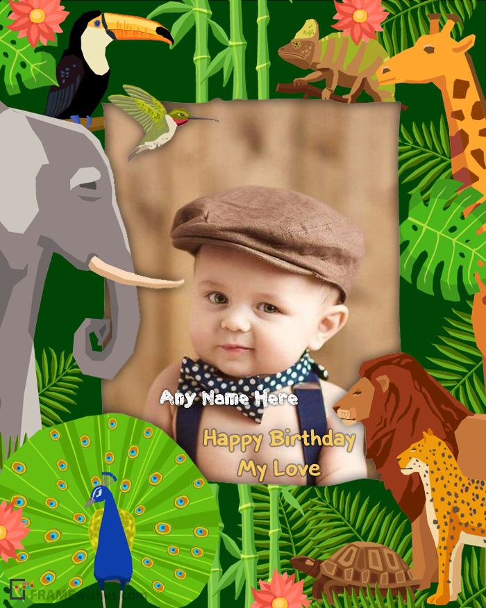 Cute Animals Kids Birthday Photo Frame